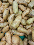 Aardappels Royalty-vrije Stock Foto's