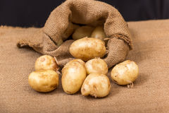 aardappels Royalty-vrije Stock Foto