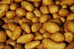 Aardappels bij een markttribune Stock Afbeelding