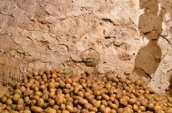 Aardappels in de kelderverdieping Royalty-vrije Stock Afbeelding