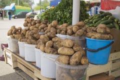 Aardappels in een emmer Stock Afbeeldingen
