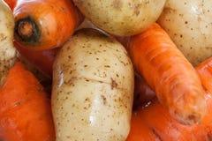 Aardappels en wortelen Stock Afbeelding