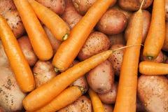 Aardappels en wortelen Royalty-vrije Stock Afbeeldingen