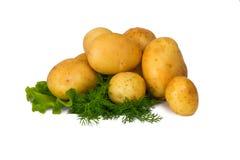 Aardappels met venkel Stock Afbeelding