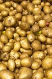 Aardappels op vertoning Stock Afbeeldingen