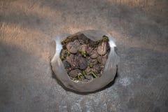 Aardappels in Plastic zak Stock Foto's