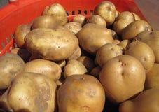 Aardappels voor verkoop stock foto