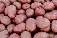 Aardappels voor verkoop stock fotografie
