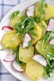Aardappelsalade Royalty-vrije Stock Afbeeldingen