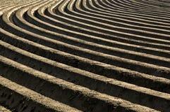 Aardappelsranden in een landelijk landschap, Nederland Stock Foto
