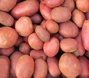 Aardappelstapel Stock Afbeeldingen