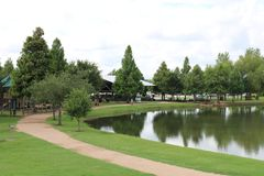 Aardbeeld voor de Riviergang van Sugar Land Memorial Park en Brazos- stock foto's