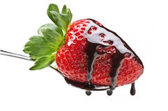 Aardbei en chocolade Stock Foto