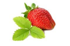 Aardbei met groen die blad op witte achtergrond wordt geïsoleerd Gezond voedsel vector illustratie