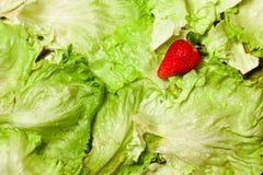 Aardbei op Salade royalty-vrije stock foto's