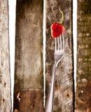 Aardbei op vork stock fotografie