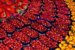 Aardbei seizoengebonden fruit Royalty-vrije Stock Afbeeldingen