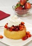 Aardbei shortcake Royalty-vrije Stock Afbeelding