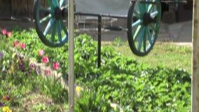 Aardbeibedden in de tuin, Bulgarije stock footage