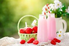 Aardbeicocktail of milkshake in een kruik, mand met aardbeien op een picknick, gezond voedsel voor Ontbijt en snacks royalty-vrije stock afbeelding