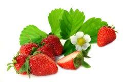 Aardbeien Royalty-vrije Stock Afbeelding