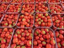 Aardbeien bij markt Royalty-vrije Stock Fotografie