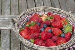 Aardbeien, bosbessen, frambozenmengeling Stock Foto
