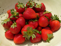 Aardbeien in collander Stock Fotografie