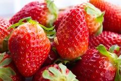Aardbeien in de de lentezonneschijn Stock Foto
