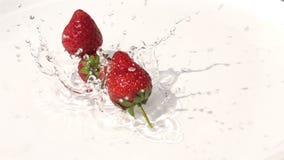 Aardbeien die op het water in witte plaat vallen stock videobeelden