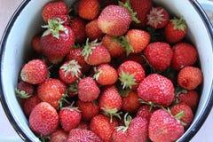 Aardbeien in een bassin royalty-vrije stock fotografie
