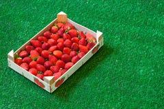 Aardbeien in een houten doos op gras Royalty-vrije Stock Afbeelding