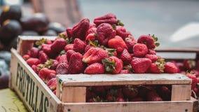 Aardbeien in een houten kooi Royalty-vrije Stock Foto