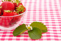 Aardbeien in een kom Royalty-vrije Stock Afbeelding