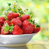 Aardbeien in een plaat Stock Foto