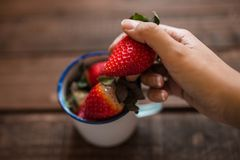 Aardbeien in een witte emailmok en één hand die een aardbei houden royalty-vrije stock foto's