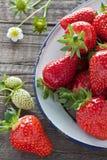 Aardbeien in emailkom Royalty-vrije Stock Afbeeldingen