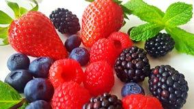 Aardbeien en bessen stock fotografie