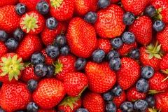Aardbeien en Bosbessen Stock Fotografie