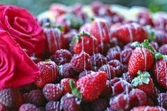 Aardbeien en frambozen royalty-vrije stock foto