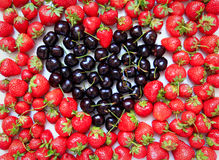 Aardbeien en Kersen Royalty-vrije Stock Foto