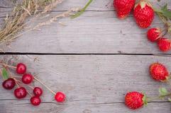 Aardbeien en kersen met gras op hout Royalty-vrije Stock Afbeelding