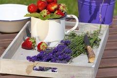 Aardbeien en lavendel op een dienblad Royalty-vrije Stock Afbeeldingen