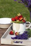 Aardbeien en lavendel op een dienblad Stock Foto