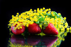 Aardbeien en mimosas Stock Afbeelding