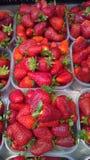 Aardbeien in kartons Stock Afbeelding