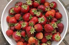 Aardbeien in kom Stock Afbeeldingen