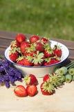 Aardbeien, lavendel en papavers in de zomer Royalty-vrije Stock Foto