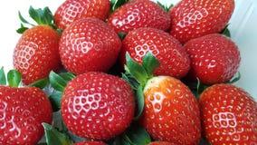 Aardbeien in macromening royalty-vrije stock fotografie