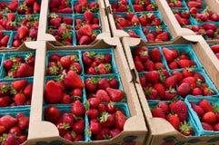 Aardbeien in manden op vertoning Royalty-vrije Stock Afbeeldingen